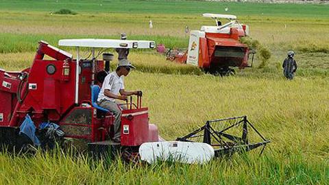 Tín dụng nông nghiệp và những điểm nghẽn cần tháo gỡ (4/4/2018)