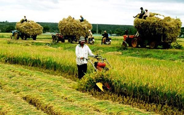 Giải pháp tín dụng để nông nghiệp nông thôn phát triển (18/4/2018)