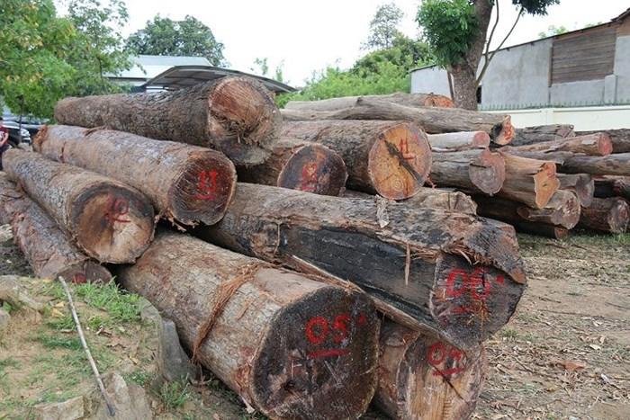 Vụ vận chuyển gỗ lậu ở Đắk Nông và câu chuyện lương tâm, trách nhiệm trong quản lý, bảo vệ rừng (5/5/2018)