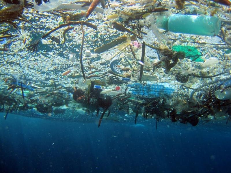 Nguy cơ ô nhiễm đại dương từ rác thải nhựa (4/6/2018)