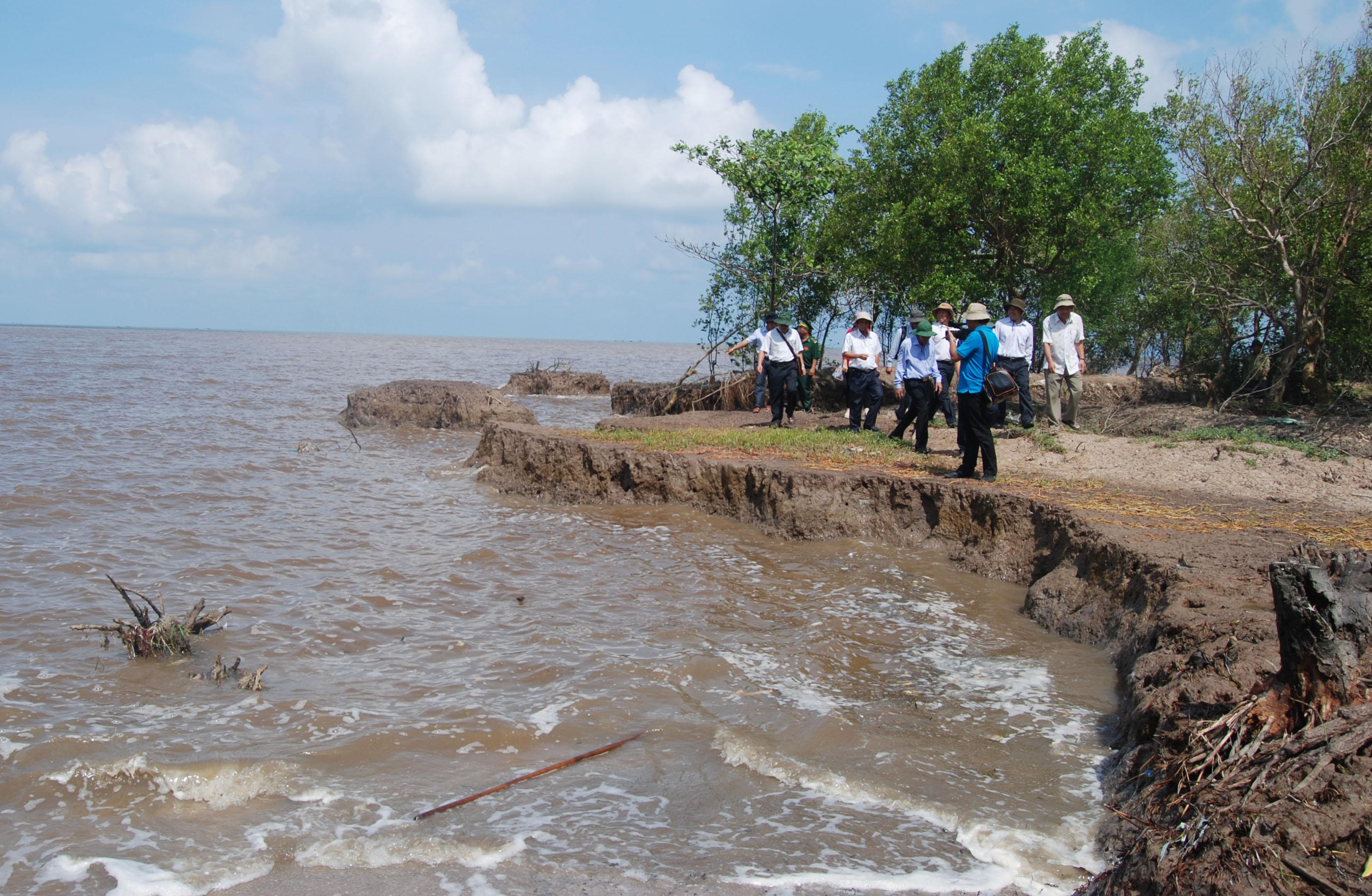 Các tỉnh đồng bằng sông Cửu Long cần làm gì để đối phó với thực trạng sạt lở ven biển? Bài 1: