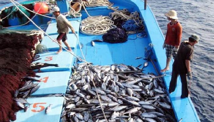 Ủy ban Châu Âu duy trì thẻ vàng thêm 6 tháng đối với thủy sản xuất khẩu của nước ta (6/7/2018)