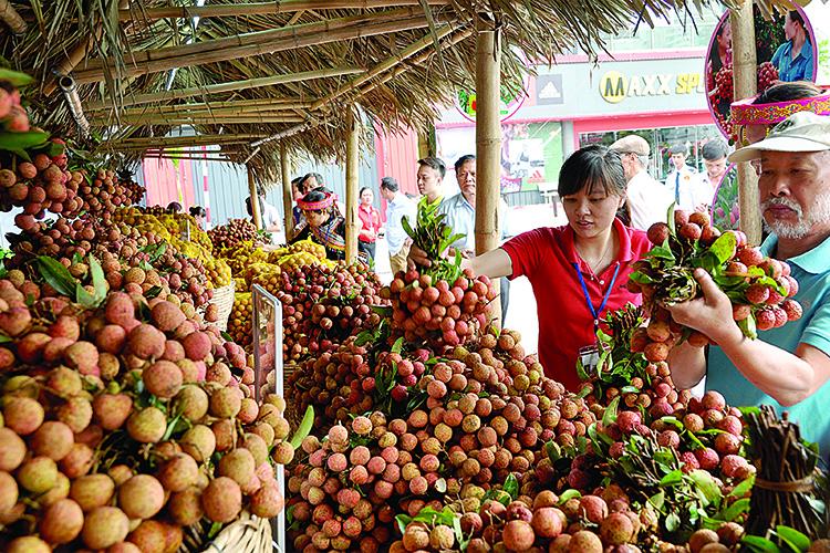 Xúc tiến thương mại đẩy mạnh tiêu thụ hàng Việt (31/8/2018)