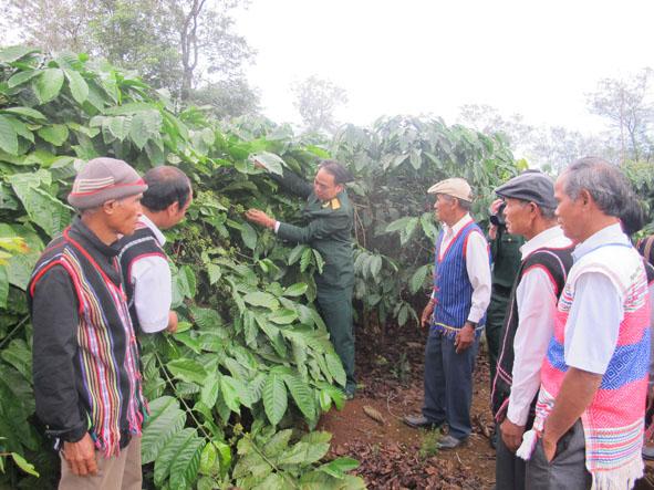 Ấm tình quân dân trong xóa đói giảm nghèo ở vùng dân tộc Cư M'gar, tỉnh Đắc Lắc (23/8/2018)