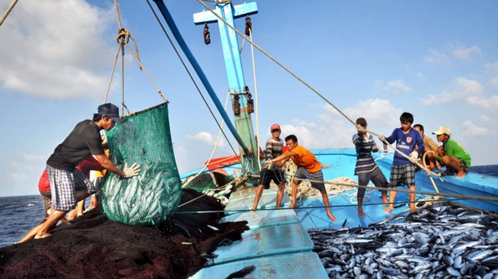 Hiệu quả của mô hình nghiệp đoàn nghề cá tại Đà Nẵng (21/1/2019)