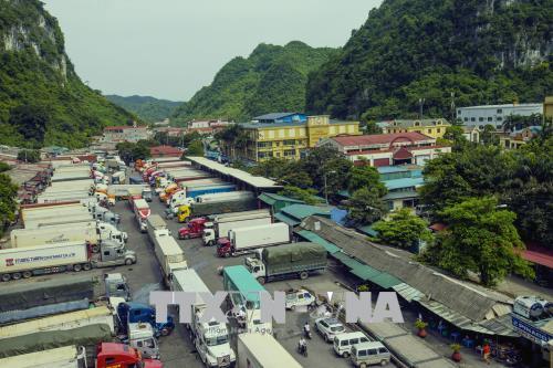 Giải pháp nào để nông sản Việt Nam không ùn ứ tại các cửa khẩu phía Bắc (9/1/2019)