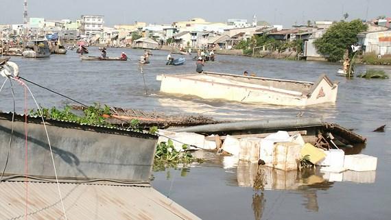 Những giải pháp lâu dài để phát triển bền vững Đồng bằng sông Cửu Long (30/1/2019)