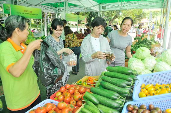 Hợp tác xã – kênh phân phối sản phẩm nông nghiệp an toàn (26/1/2019)