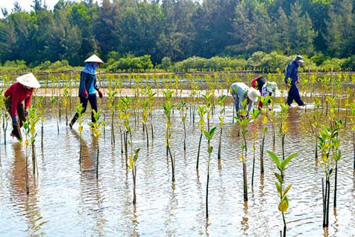 Định hướng nông dân cách canh tác để ứng phó với biến đổi khí hậu (22/1/2019)