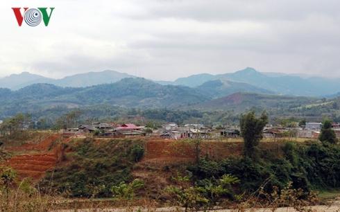 Mùa xuân hồi sinh trên vùng lũ Văn Chấn, Yên Bái (30/1/2019)
