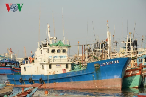 """Bà Rịa - Vũng Tàu: Tàu đóng theo Nghị định 67 nằm bờ vì """"vướng"""" bảo hiểm (14/1/2019)"""