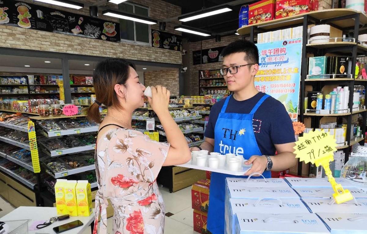 Xuất khẩu sữa tươi chính ngạch sang Trung Quốc - Cơ hội phát triển cho ngành sữa Việt Nam (28/10/2019)