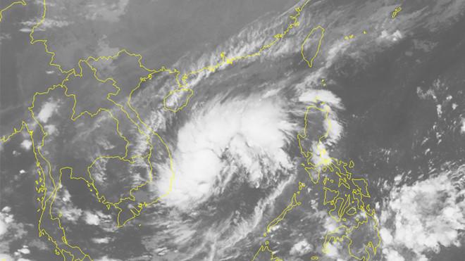 THỜI SỰ 12H TRƯA 30/10/2019: Hàng nghìn người dân được sơ tán, trước khi bão số 5 đổ bộ vào vùng biển từ Quảng Ngãi đến Ninh Thuận.