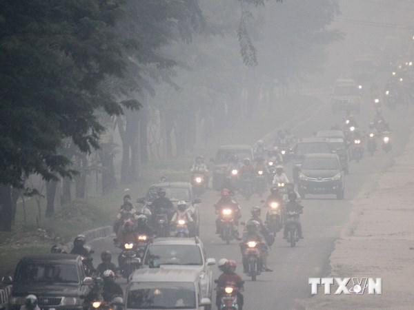 Indonesia nỗ lực ngăn ngừa khói bụi (9/10/2019)