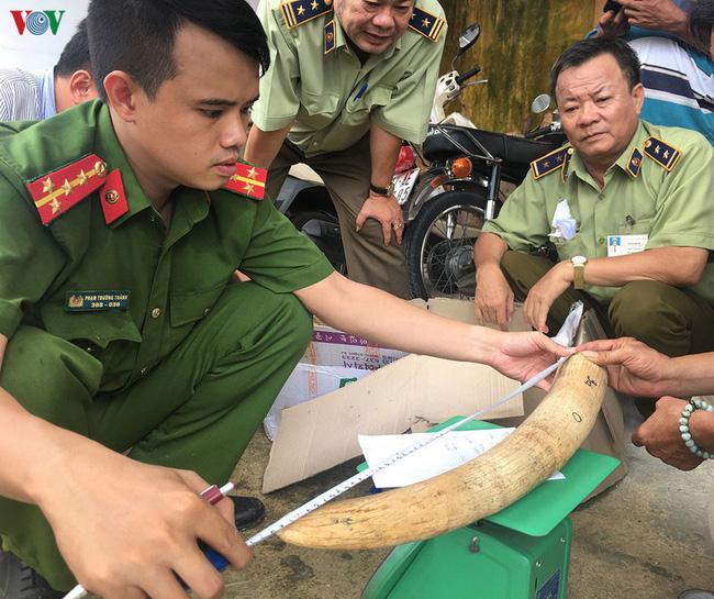 Bình Định: Phát hiện gần 18kg nghi ngà voi vận chuyển trái phép (18/10/2019)