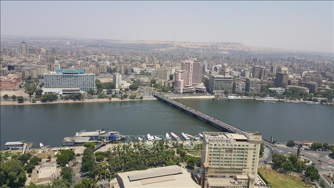 """Sáng kiến """"Những khu vườn trên nóc nhà ở Ai Cập"""" giúp cải thiện chất lượng không khí đô thị (7/10/2019)"""