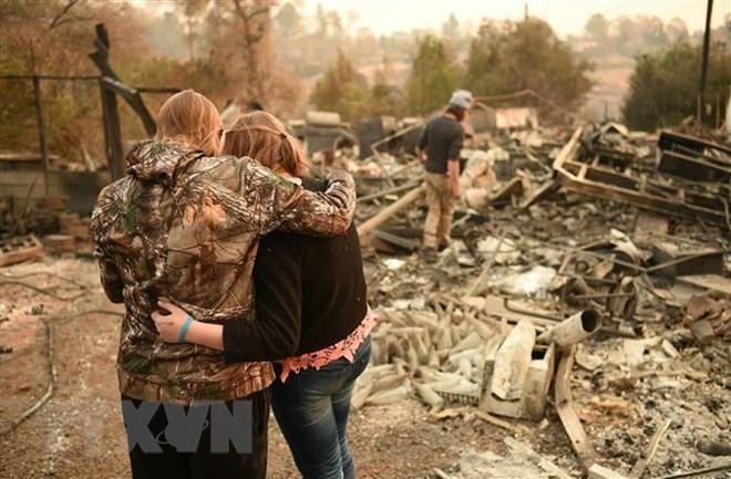 """""""Nhà di động"""" cho người vô gia cư vì cháy rừng ở California, Mỹ (12/11/2019)"""