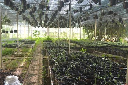 Bảo tồn và sử dụng bền vững nguồn gen ở Việt Nam (2/12/2019)