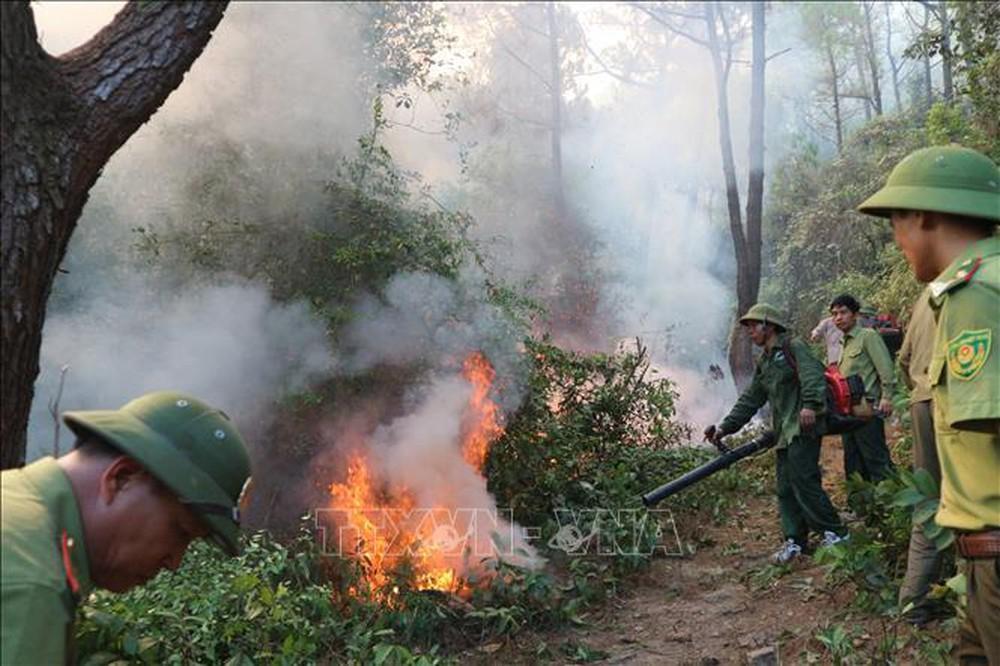 Cảnh báo nguy cơ cháy rừng mùa khô trước tác động của biến đổi khí hậu (4/12/2019)