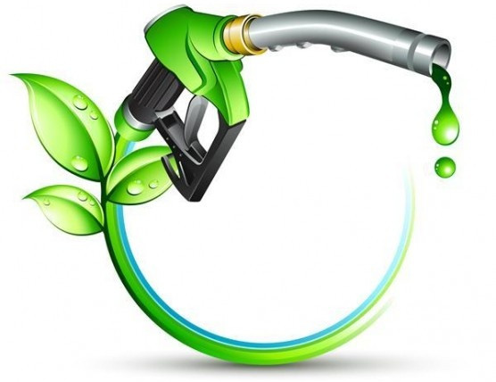 Tổng quan về nhiên liệu sinh học và xăng sinh học (3/12/2019)