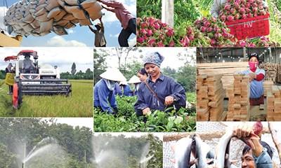 Ngành nông nghiệp 2019: Khó khăn nhưng vẫn nhiều điểm sáng ( 25/12/2019)