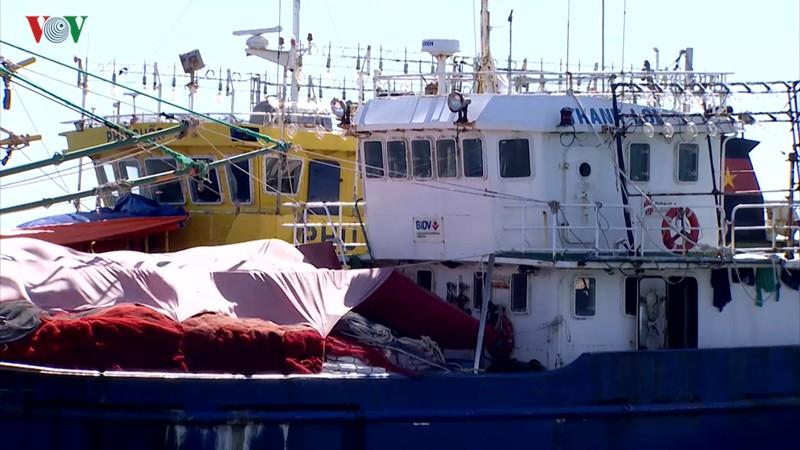 Thực trạng các tàu đánh bắt hải sản được đóng từ vốn vay nghị định 67 gặp khó khăn ở nhiều địa phương (5/12/2019)