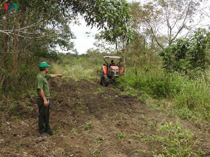 Quyết liệt phòng chống cháy rừng mùa khô 2019 - 2020 (13/12/2019)
