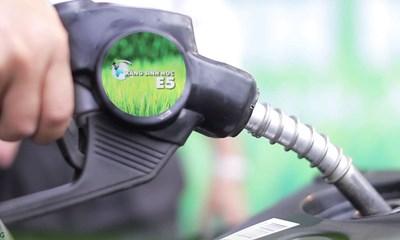 Xăng sinh học E5 có thể để được bao lâu trong bình chứa xăng? (27/11/2019)