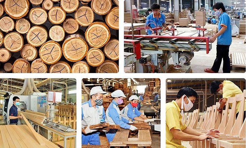 Chế biến, xuất khẩu gỗ - giải pháp bứt phá năm 2019 (22/2/2019)