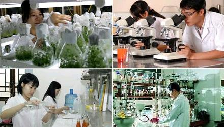 Nhiều chính sách mới ưu đãi doanh nghiệp khoa học và công nghệ vừa được ban hành (Thời sự sáng 14/2/2019)