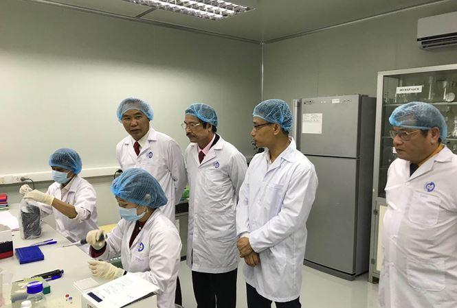 8 phòng xét nghiệm miễn phí vi rút gây dịch tả lợn Châu Phi (Thời sự trưa 22/2/2019)