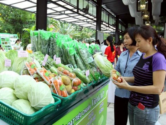 Cầu nối đưa nông sản Việt hội nhập quốc tế (12/2/2019)