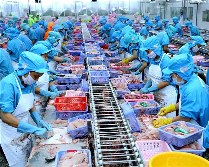 Thủy sản Việt Nam đặt mục tiêu đưa kim ngạch xuất khẩu lên 10 tỷ USD trong năm nay (17/2/2019)