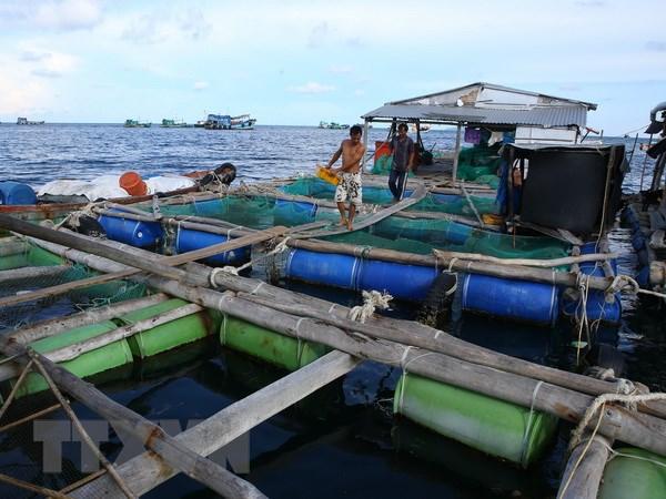 Xã đảo Nam Du, huyện Kiên Hải, tỉnh Kiên Giang khai thác gắn với bảo vệ nguồn lợi hải sản bền vững (28/2/2019)
