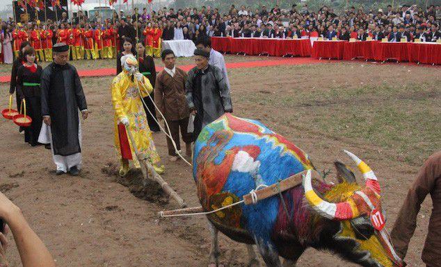 Hôm nay tại xã Đọi Sơn, huyện Duy Tiên, diễn ra Tết chính hội Lễ tịch điền và công bố các xã đạt chuẩn nông thôn mới của tỉnh Hà Nam (Thời sự sáng 11/2/2019)