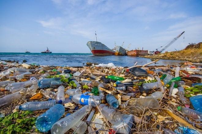 Chống rác thải nhựa, từ ý thức con người đến bảo vệ môi trường biển (26/2/2019)
