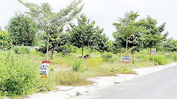 Người dân Đà Nẵng thận trọng trong việc mua bán đất, không chạy theo cái lợi trước mắt mà bán đất nông nghiệp và đất ở (Thời sự đêm 7/3/2019)