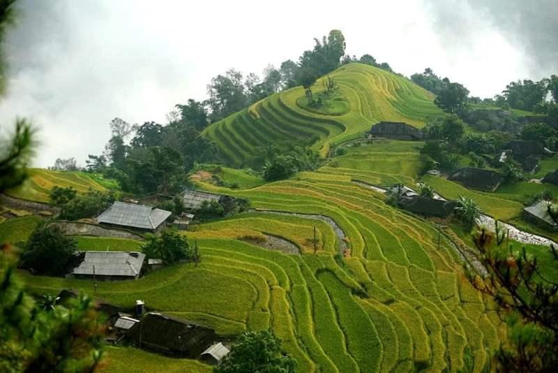 Đến với Bản Phùng – nơi có những thửa ruộng bậc thang cao nhất Việt Nam (16/3/2019)