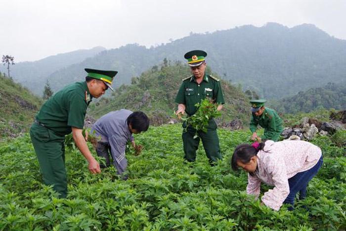 Bộ đội Biên phòng tham gia phát triển kinh tế gắn với bảo vệ chủ quyền, an ninh biên giới quốc gia (3/3/2019)