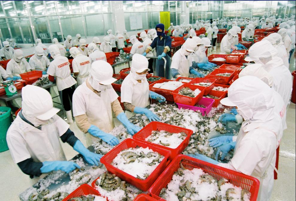 Xuất khẩu thủy sản của Việt Nam tiếp tục khởi sắc (14/3/2019)