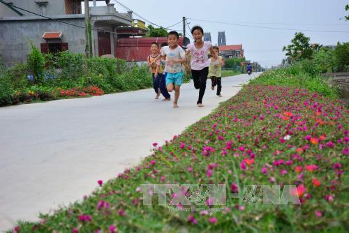 Xây dựng Nông thôn mới thành công tại Nam Định nhờ sự đồng thuận của người dân (17/3/2019)