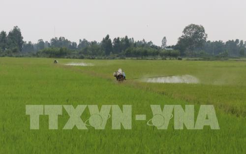Bộ Nông nghiệp và Phát triển Nông thôn chính thức ban hành quyết định loại bỏ thuốc bảo vệ thực vật chứa hoạt chất Glyphosate ra khỏi Danh mục thuốc Bảo vệ thực vật được phép sử dụng tại Việt Nam (Thời sự chiều 10/4/2019)