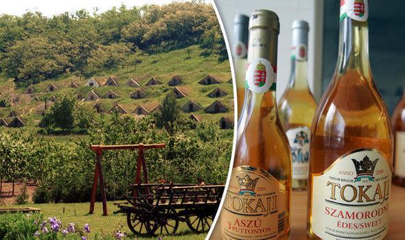 Tokaj nỗ lực vực dậy dòng rượu vang quý của Hungary (22/4/2019)