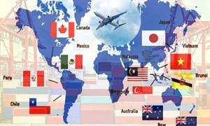 Nhìn lại 3 tháng Hiệp định Đối tác Toàn diện và Tiến bộ xuyên Thái Bình Dương (CPTPP) có hiệu lực với Việt Nam: Những đòi hỏi từ thực tế (22/4/2019)