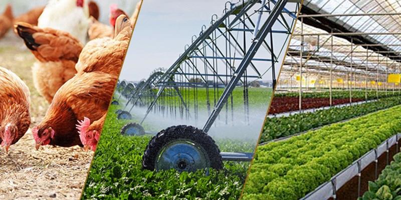 Cần tăng cường hợp tác, liên kết sản xuất và tiêu thụ sản phẩm nông nghiệp (13/4/2019)