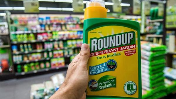 Loại Glyphosate khỏi danh mục thuốc bảo vệ thực vật được phép sử dụng (11/4/2019)