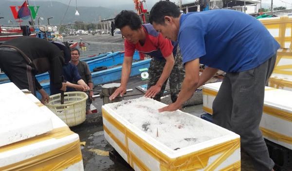 Bộ Nông nghiệp và Phát triển nông thôn bàn giải pháp cấp bách khắc phục thẻ vàng của Ủy ban Châu Âu đối với thủy sản Việt Nam. (Thời sự chiều 23/4/2019)