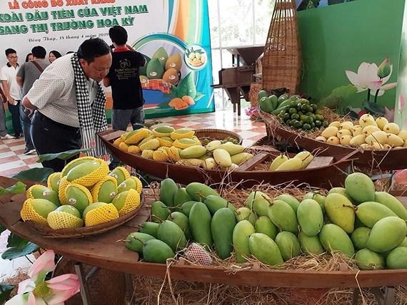 Công bố xuất khẩu lô xoài đầu tiên của Việt Nam sang thị trường Mỹ (Thời sự chiều 18/4/2019)