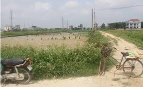 Lấn chiếm đất nông nghiệp ở Hưng Yên: Phải xử lý dứt điểm (8/5/2019)