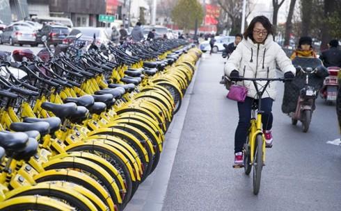 Đường dành cho xe đạp đầu tiên của Bắc Kinh (Trung Quốc) chính thức hoạt động (31/5/2019)